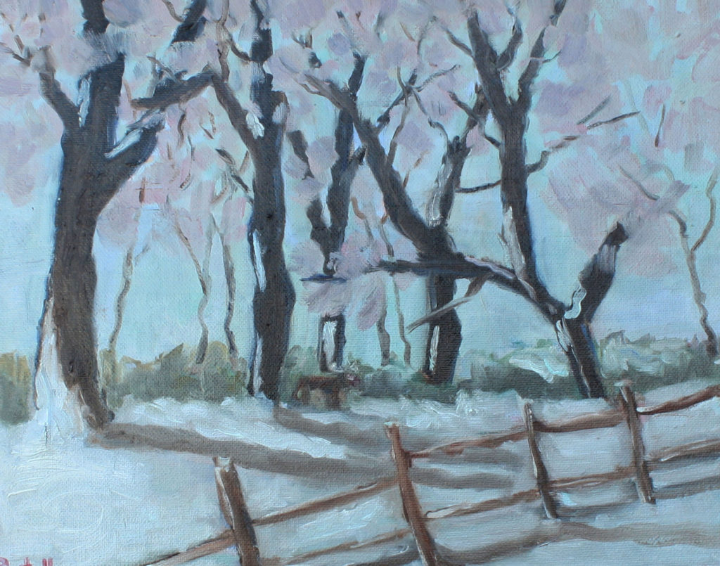 Winters Dream